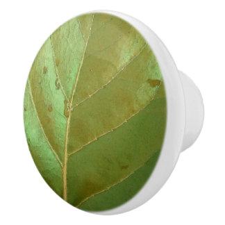 Sea Grape Leaf Closeup Ceramic Knob