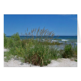 Sea Grass along the seashore Card
