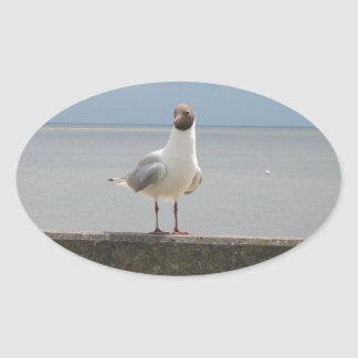Sea gull on the wall North Sea Oval Stickers