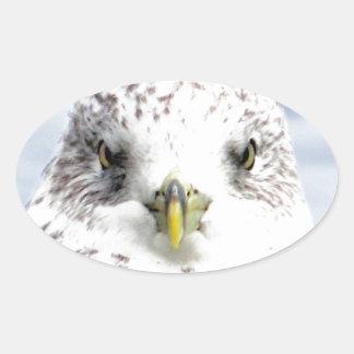 sea gull peace freedom oval sticker