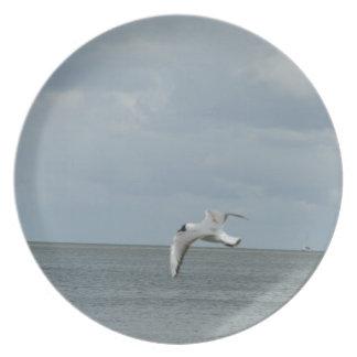 Sea gull plate