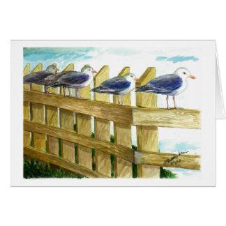 Sea gulls in a row card