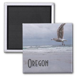 Sea Gypsy Magnet
