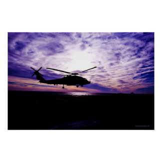Sea Hawk Landing at Sunset Poster