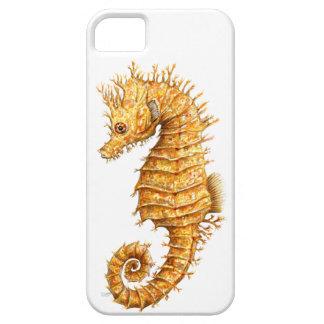 Sea horse Hippocampus hippocampus iPhone 5 Case