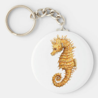 Sea horse Hippocampus hippocampus Keychain