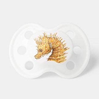 Sea horse Hippocampus hippocampus Pacifier
