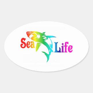 Sea Life Shark Oval Sticker
