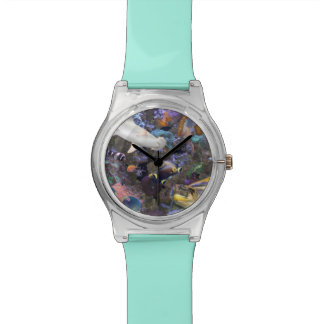 Sea Life Watch