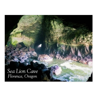 Sea Lion Cave Postcard