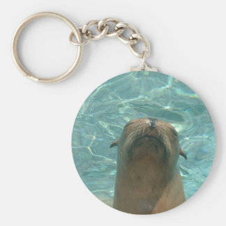Sea Lion Keychain
