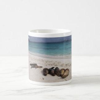 Sea Lion Mug