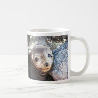 Sea lion pup, Isla Las Plazas, Galapagos Coffee Mug
