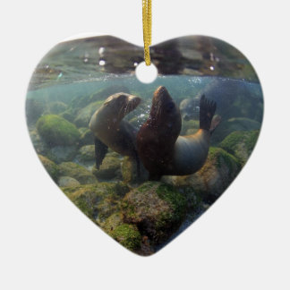 Sea lion pups playing underwater Galapagos Islands Ceramic Ornament