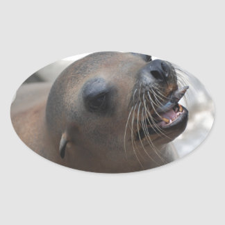 Sea Lion Snacking Stickers
