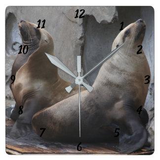 Sea Lion Square Clock