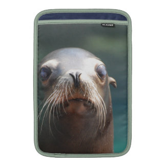Sea Lion with Whiskers MacBook Sleeve