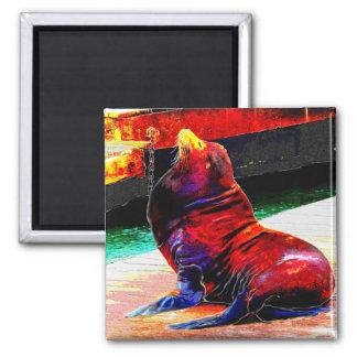 Sea LionMagnet Magnet