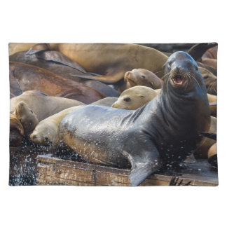 Sea Lions on the Floating Dock in San Francisco Placemat