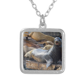 Sea Lions on the Floating Dock in San Francisco Silver Plated Necklace