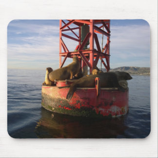 Sea Lions Relaxing on a Buoy in Dana Point Mouse Pad