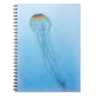 Sea Nettle Notebook