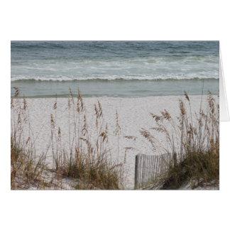 Sea Oats Along the Beach Side Card
