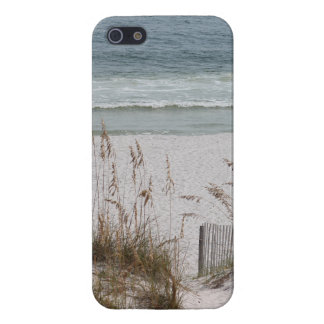 Sea Oats Along the Beach Side Case For iPhone 5/5S