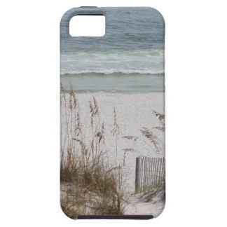 Sea Oats Along the Beach Side iPhone 5 Covers