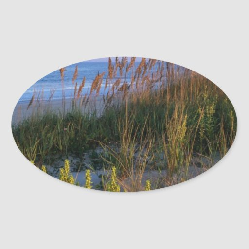 Sea Oats and Beach Sticker