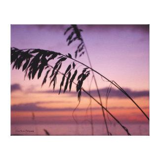 Sea Oats at Sunrise Canvas Print