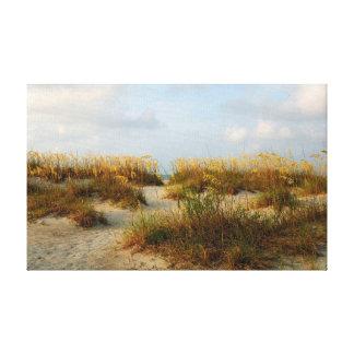 sea oats on the beach canvas print