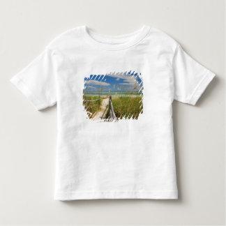 Sea oats Uniola paniculata) growing by beach, T-shirts