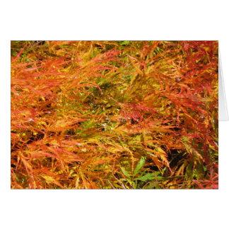 Sea of Fall Color Card