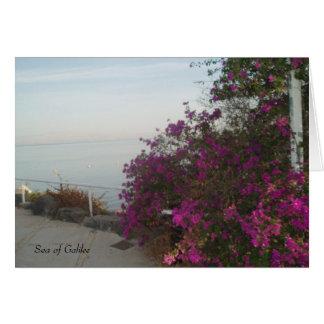 Sea of Galilee Card