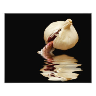 Sea of Garlic Photo Print