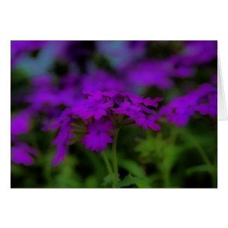 Sea of Purple Flowers Greeting Card