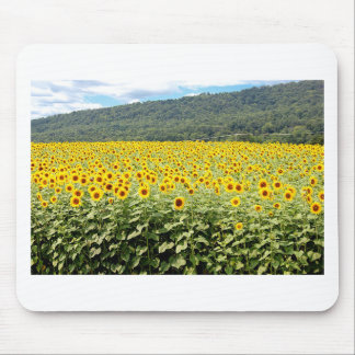Sea of Sunflowers Mouse Pad