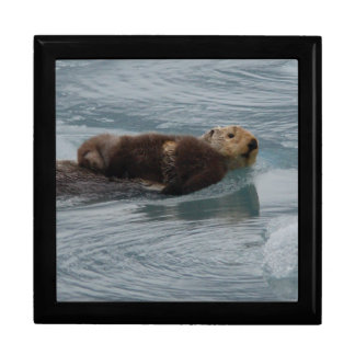 sea otter and baby gift boxes