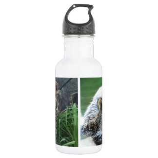 Sea otter and cheetah cub 532 ml water bottle