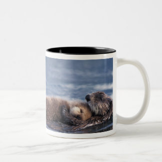 sea otter, Enhydra lutris lutris, mother with 2 Two-Tone Coffee Mug