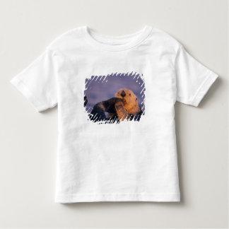 Sea Otter, Enhydra lutris Tee Shirt