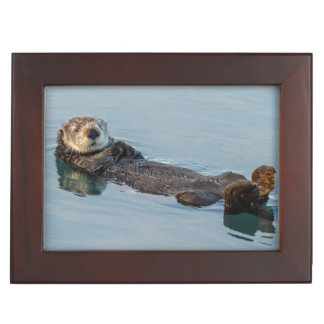 Sea otter floating on back in ocean keepsake box