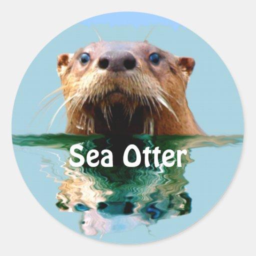 SEA OTTER Series I Round Sticker