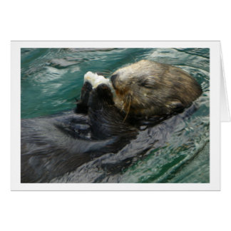 Sea Otter Snacking Card