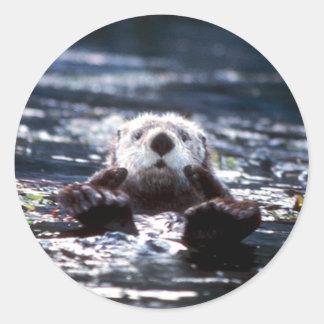 Sea Otter Swimming Classic Round Sticker