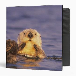 Sea Otters, Enhydra lutris 5 Vinyl Binder