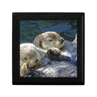 Sea-otters Keepsake Box