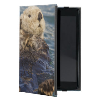 Sea otters play on icebergs at Surprise Inlet Covers For iPad Mini