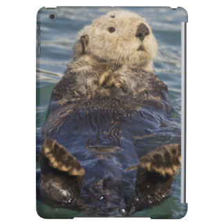 Sea otters play on icebergs at Surprise Inlet iPad Air Cases